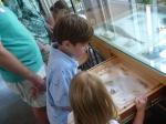 Examining rat bones
